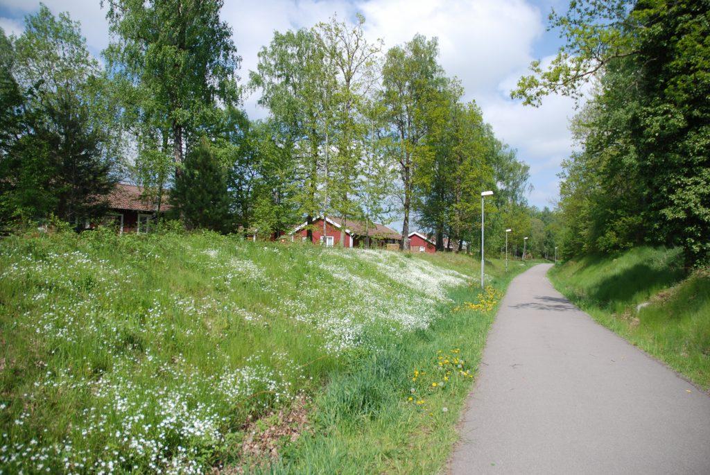 Ljungbyholm